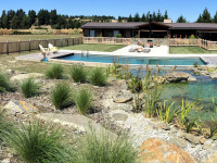 Wanaka Haven Pool 1
